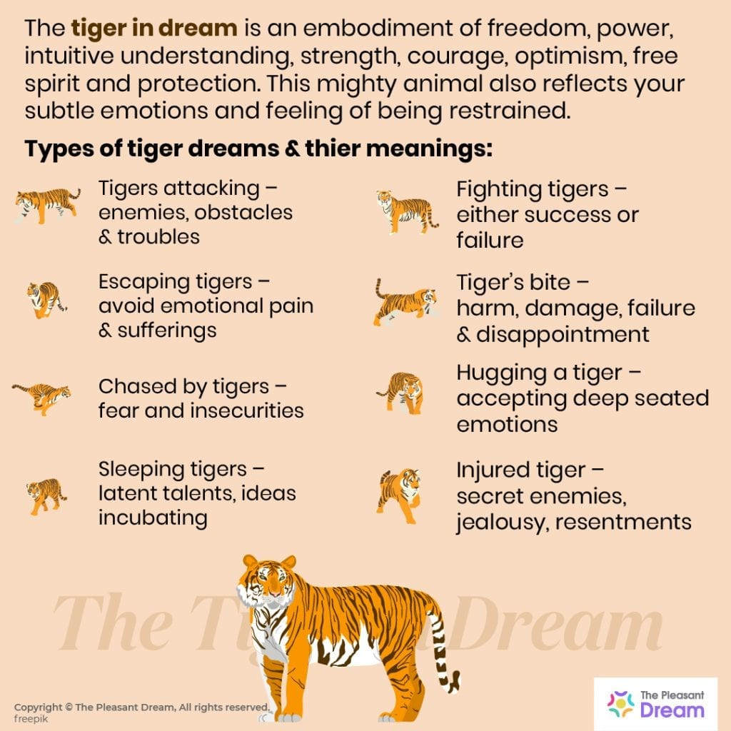 Tiger Dream Meaning – 40 Types of It & Their Interpretations