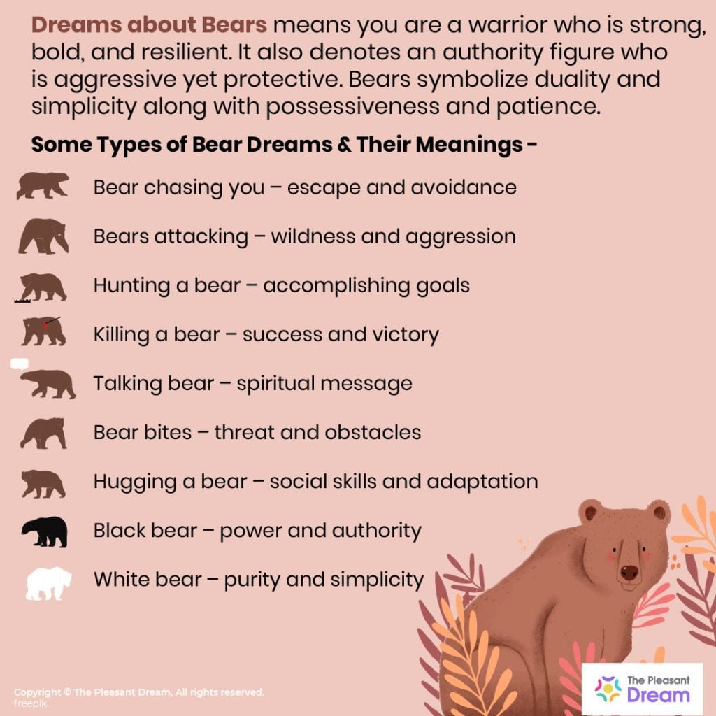46 Dreams about Bears – The Ultimate guide with Illustrations