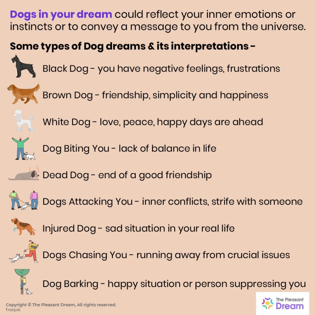 Dreaming of Dog – The Only Guide You Need