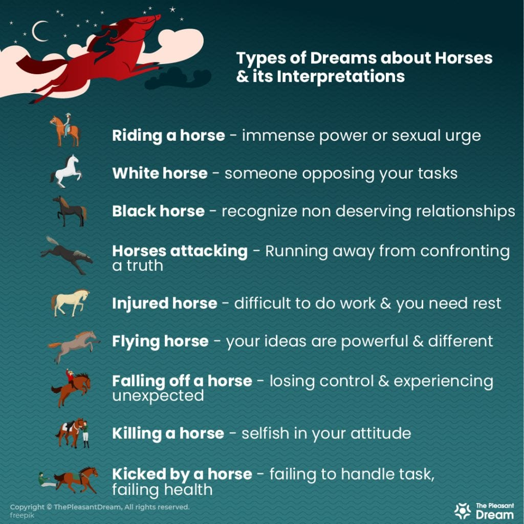 80 Types of Dreaming of Horses & Their Meanings