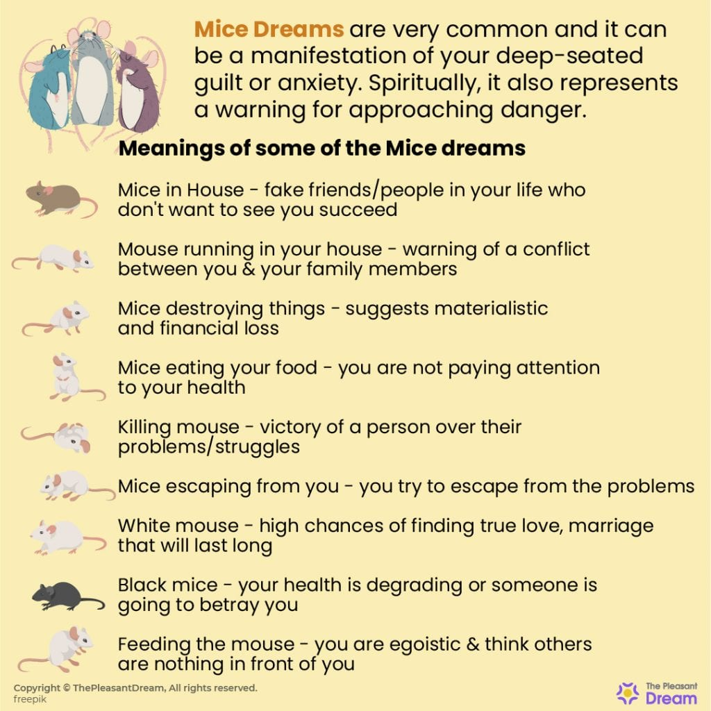 Dreaming of Mice - 48 Types of Dreams & its Meaning