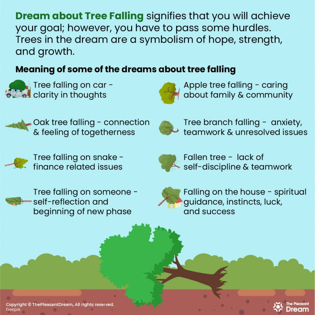 Dream of Tree Falling 20 Types of Scenarios and it's Meanings