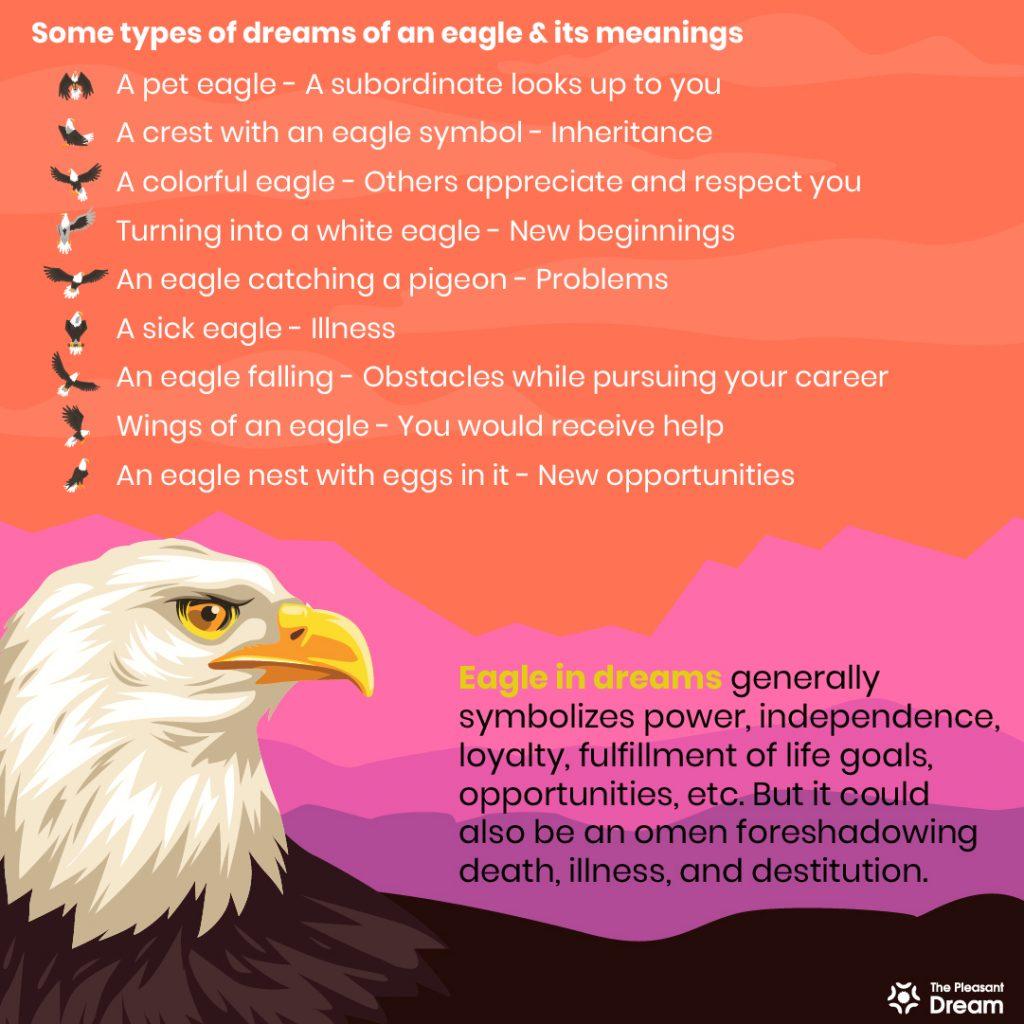 Eagle in Dream - 100+ Dream Scenarios & Their Meanings