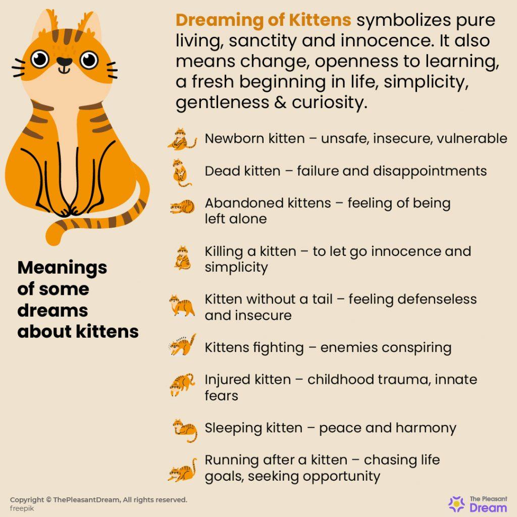 Dreaming of Kittens – 55 Dream Scenarios Explained