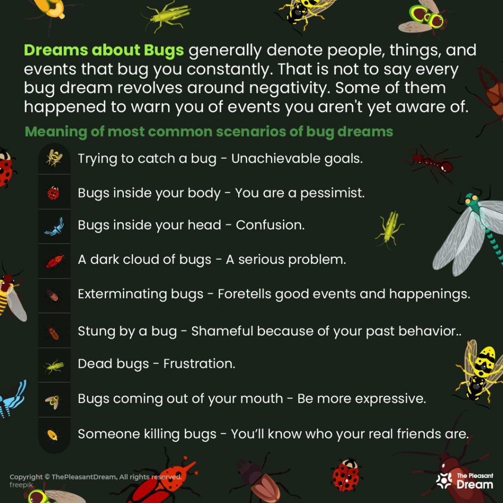 Dreams About Bugs - 91 Scenarios & Its Meanings