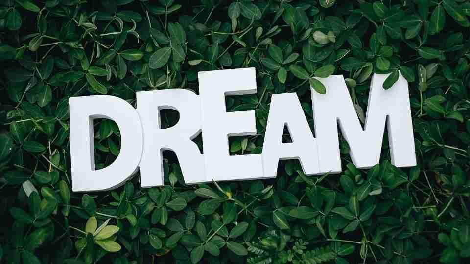 What are Dreams - Definition, Cause, Duration, Types, and More